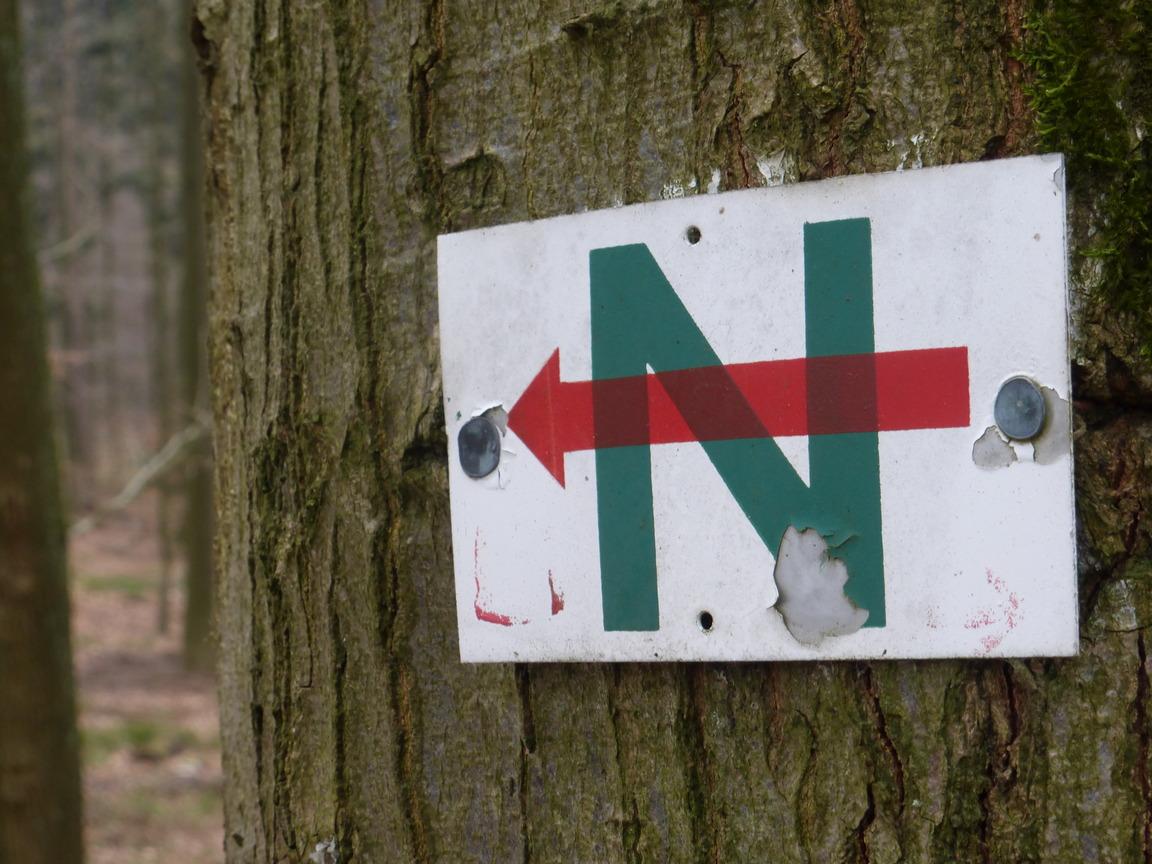 Roter Pfeil auf grünem N weist den Weg