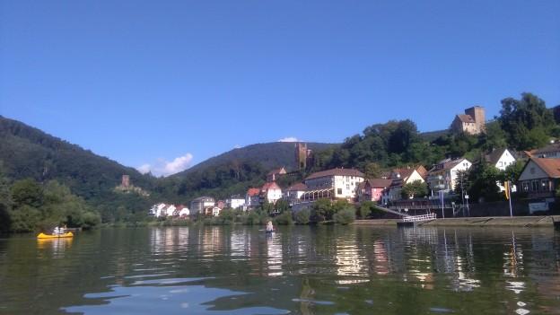 Kanutengruppe auf dem Neckar vor Neckarsteinach