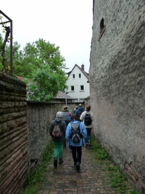 NaturErlebnistag_05-2015_007.JPG