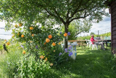 20170520_NF Einweihung Garten_Karl-92.jpg