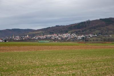 20180106 NF-Dreikönigswanderung_Boßeln_Karl-94.jpg