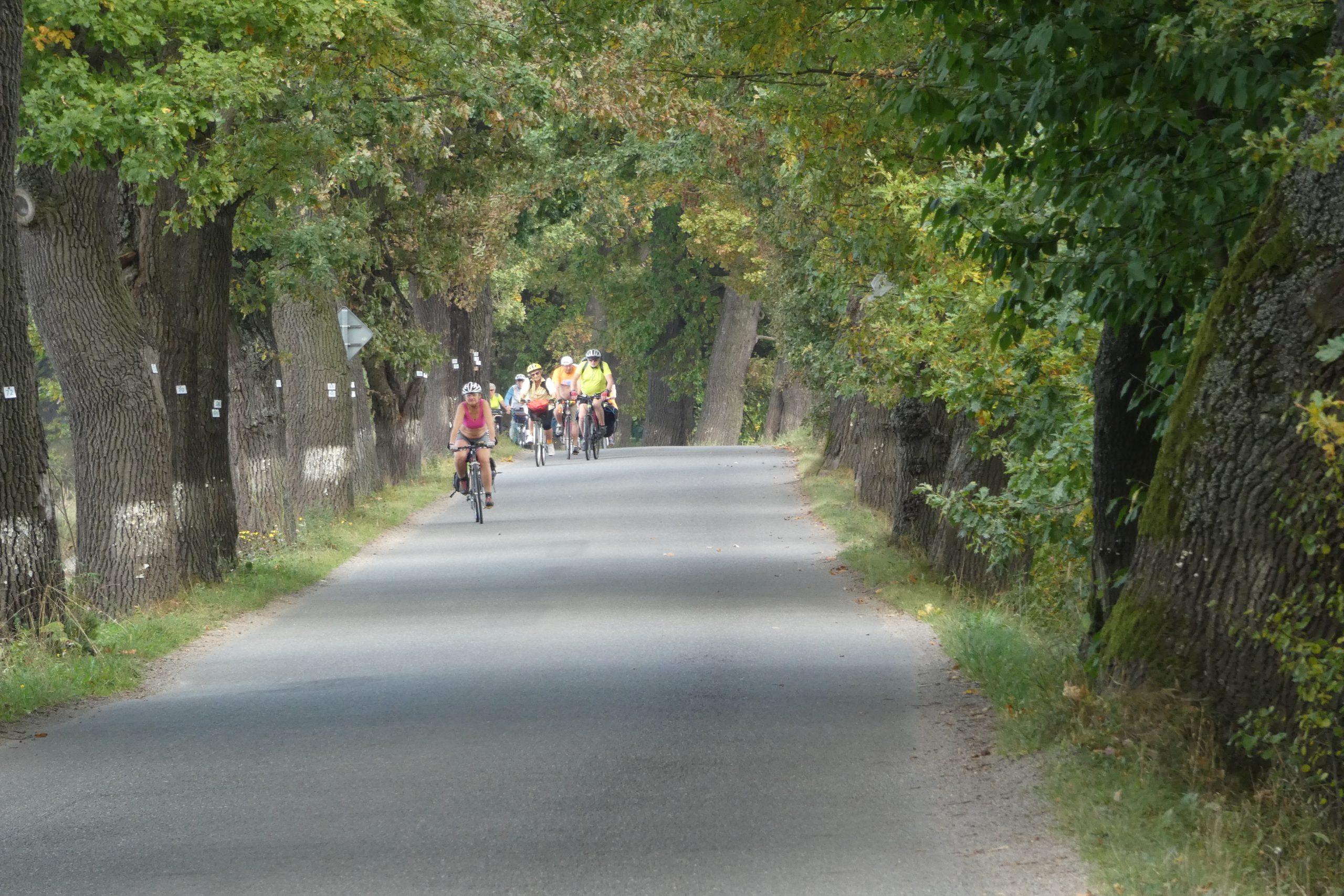 Radtour vo vorne unter Eichenallee