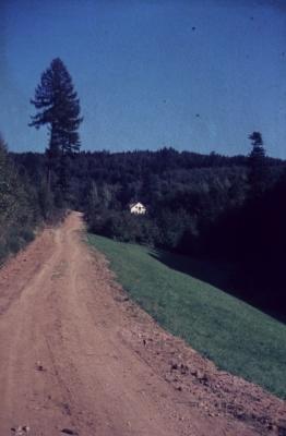 1981 001 Hütte.jpg