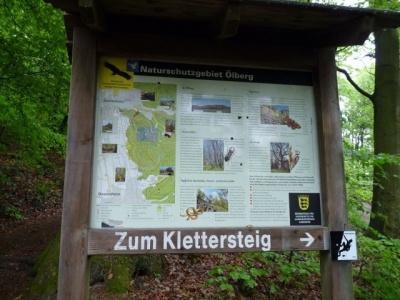NaturErlebnistag_05-2015_041.JPG