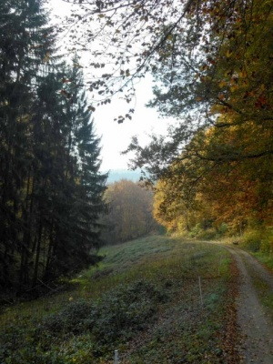20161101_NF-FF_Letzte Einkehr__Anke Kiessling-7091648.jpg